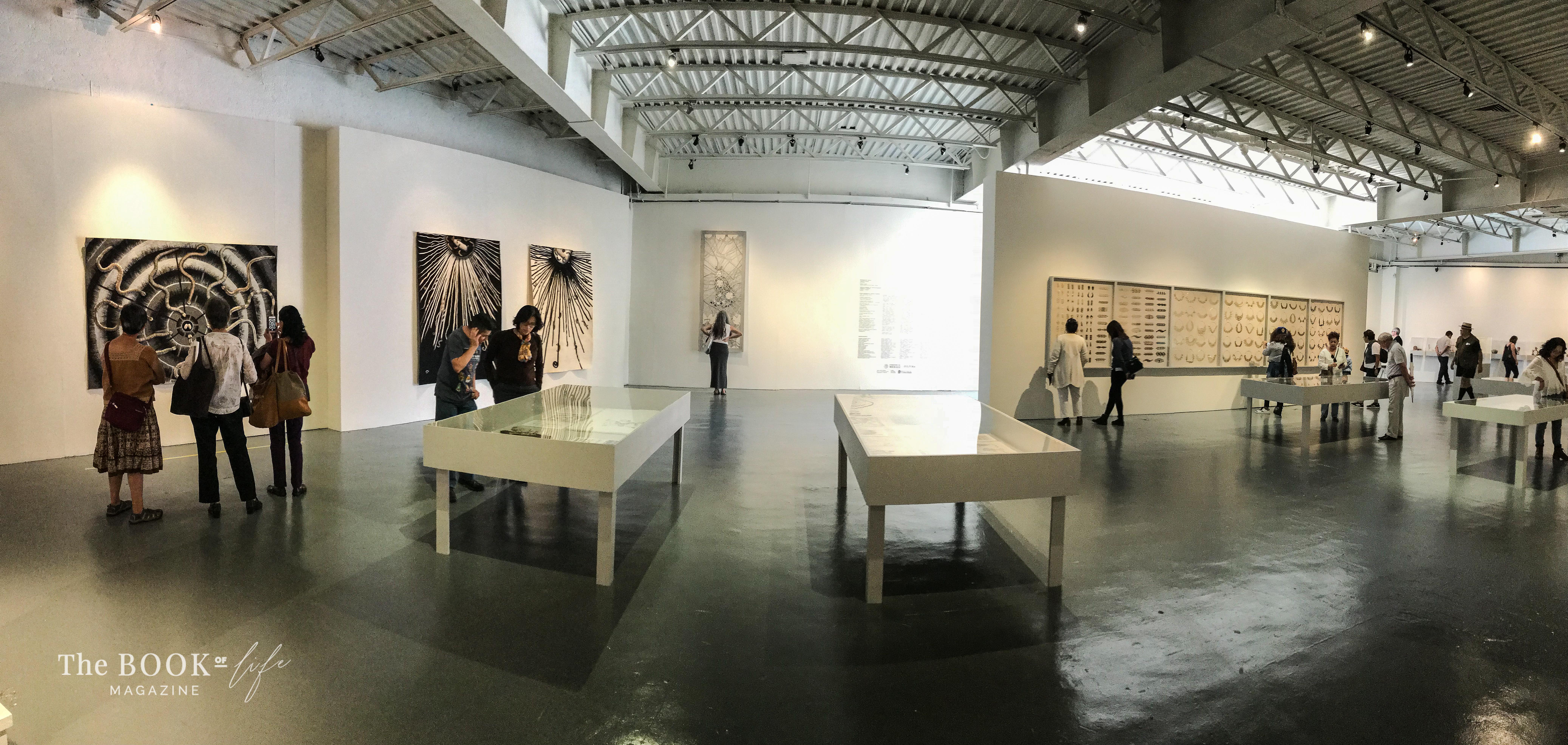 Exposición: Toledo ve, panorámica / Foto: Alejandro C. / Museo Nacional de Culturas Populares. 2019